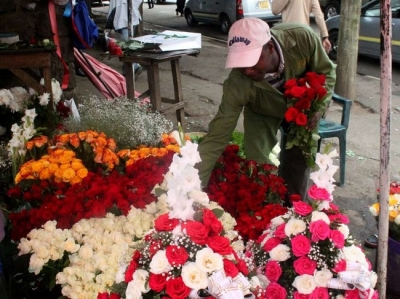 Feature: Flower prices surge in Kenya as Valentine's Day fever peaks
