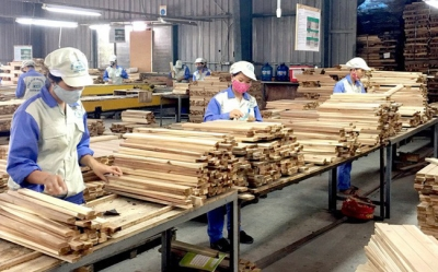2018 a successful year for wood industry