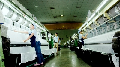 Q1 witnesses high increase in number of newly-established enterprises