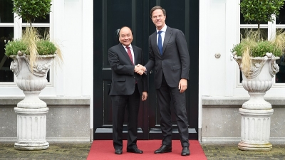 Promoting Vietnam-Netherlands ties to be more extensive, effective