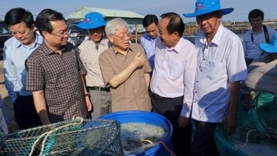 Kien Giang urged to boost industrial development