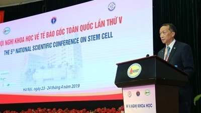 Vietnam performs over 750 stem cell transplants in ten years