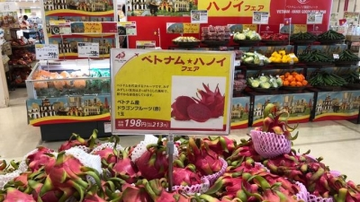 Bringing Vietnamese goods to the retail system in Japan