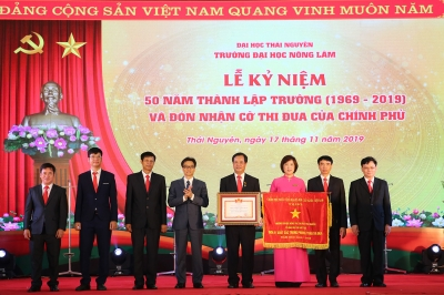 Various activities marks Vietnamese Teachers' Day
