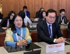 Vietnam active at 33rd conference of Red Cross & Red Crescent