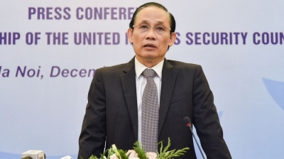 Vietnam wants peace and strives for peace: Deputy FM