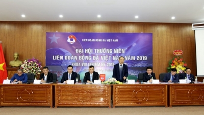 Vietnam Football Federation convenes annual congress