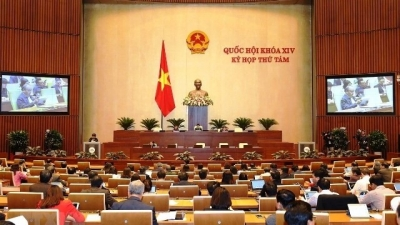 Eight notable activities of Vietnam National Assembly in 2019