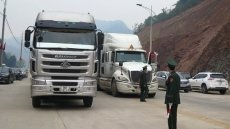 Tan Thanh border gate clears 20 trucks of agricultural produce