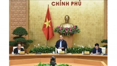 "Vietnam now at ""golden stage"" of COVID-19 fight: PM"