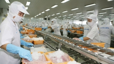 Vietnam's economic growth slows to 3.82% in first quarter