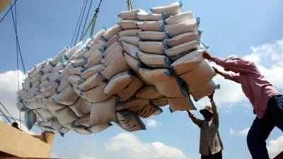 PM orders suspension of signing rice-exporting contracts