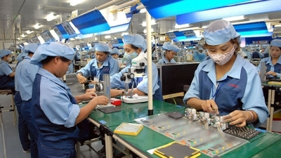 Productivity growth key to Vietnam's high-income goal: World Bank