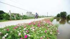 Vietnam to have 60% of communes to meet new rural standards in 2020