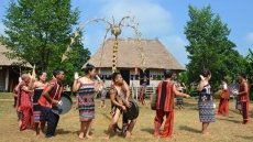 Cultural village celebrates Vietnam Family Day with various activities