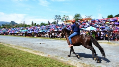 Bac Ha Horse Race sees participation of female jockey for the first time