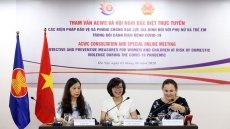 Int'l teleconference discuss measures to prevent domestic violence amid COVID-19