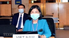 Vietnam prioritises child right protection: ambassador