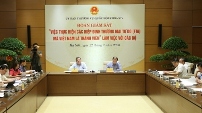 Vietnam's exports to CPTPP member countries increase sharply: report