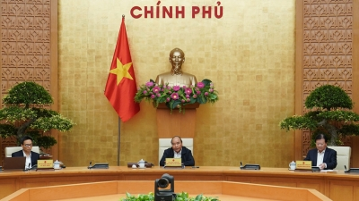 PM: Entry to Vietnam must be closely controlled