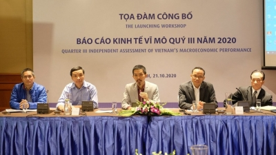 Vietnam's economy to expand 2.6-2.8% in 2020: VEPR