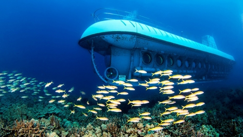 PM green-lights trial of tourist submarine services in Nha Trang Bay