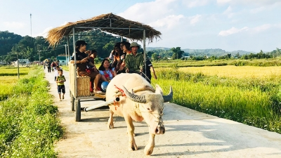 "Che Can Village: The ""heart"" of Muong Phang District's tourism"