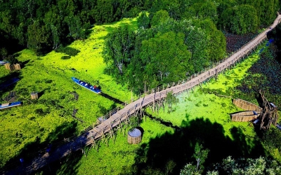 "A spring tour to Tra Su melaleuca forest, ""checking-in"" at Vietnam's longest bamboo bridge"