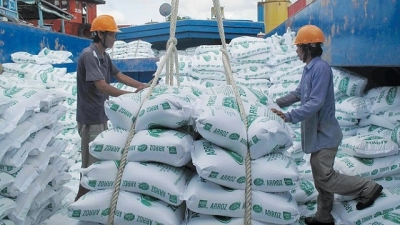 Rice exports see reduction in volume but rise in prices
