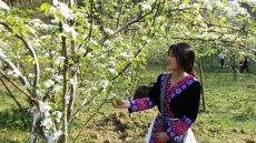 Visitors flock to Bac Ha to admire blooming pear flowers