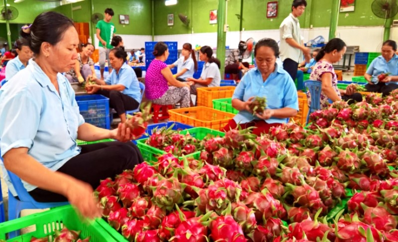 Vietnam makes efforts to maintain agricultural growth momentum