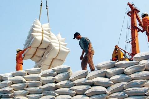 vietnam rice exporting industry Cambodian rice organization facing own problems   the country's rice industry cambodia was exporting much less rice than its neighbors thailand and vietnam,.