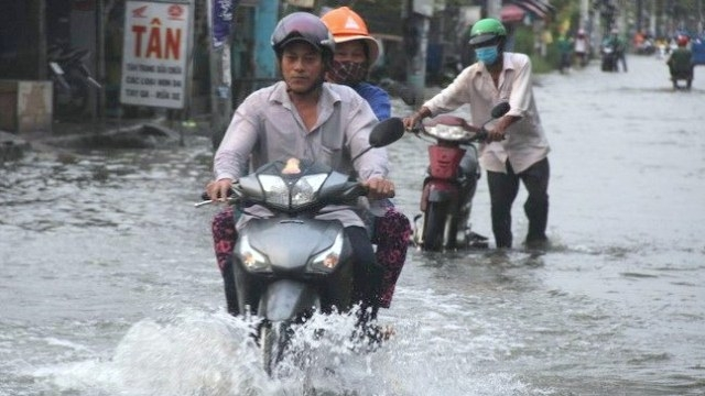 Netherlands commits to support Vietnam in flood mitigation